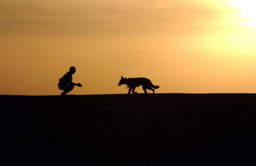 Walking His Dog